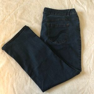 Lane Bryant Genius Fit Slim Bootcut size 26.